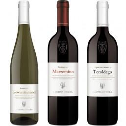 Box 3 vini del Trentino